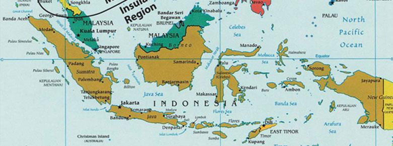 indonesia-cat